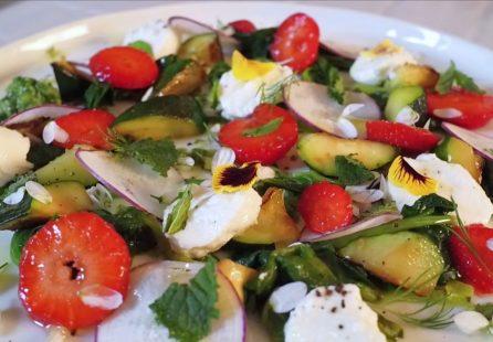 salade colorée légumes primeurs